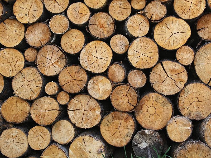 Spalování dřeva – zelená volba